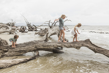 Caucasian boy and girls balancing on driftwood on beach