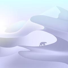 North pole landscape. Snowdrift. Polar bear