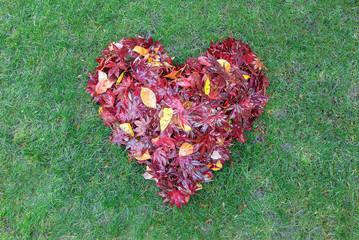 Fallen Leaves Raked into Heart Shape on Green Grass
