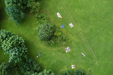 People sunbathe on a green lawn in a summer park, top view