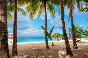 Fototapete - Jamaica beach on Caribbean sea in Montego Bay.