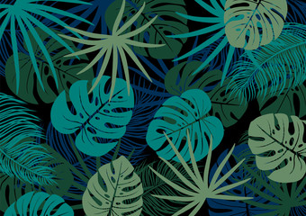 Tropical leaves on black background vector illustration