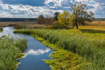 Autumnal landscape with small Ukrainian river Merla located in Poltavsk region