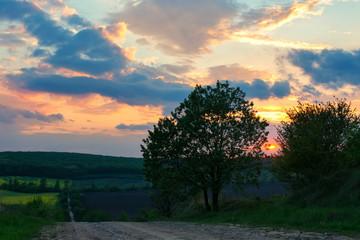 landscape, Ukrainian landscape, sunset in the field,