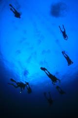 Scuba diving. Scuba divers underwater in ocean
