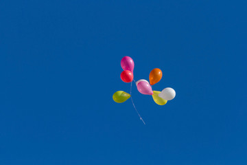 Colorful balloons flying through the air