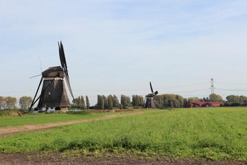 Windmills in the Tweemanspolder, Zevenhuizen