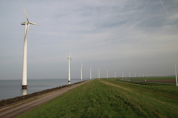 Windmills along the IJsselmeer in Flevoland, The Netherlands