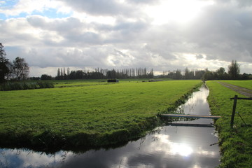 Meadow in the Zuidplaspolder with clouds reflection in water