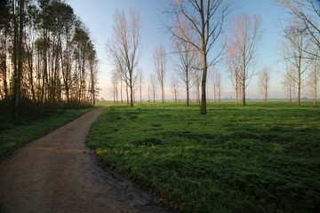 sunrise over the meadows in park Hitland, The Netherlands