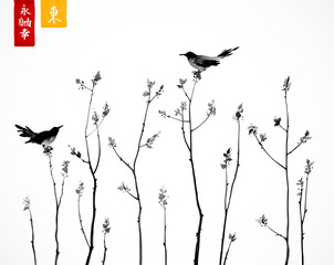 Two black birds on trees branches on white background. Contains hieroglyphs - zen, freedom, nature