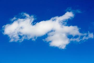 Billowy Serpent Cloud and Blue Sky