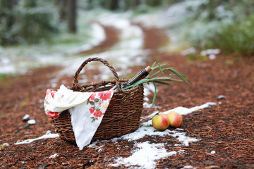 Picnic in the coniferous forest in late autumn. Basket with wine and apples.