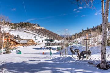Ski Scenes
