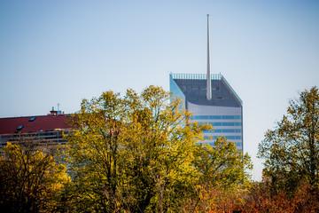 La tour In-City à travers les arbres du parc de la Tête d'Or