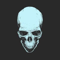 Skull. Vector stencil