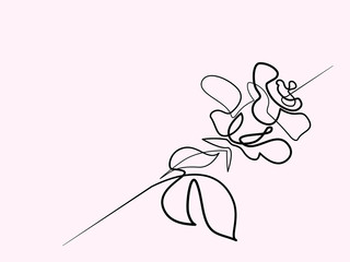 Continuous one line drawing. Beautiful rose flower logo. Vector illustration. Concept for logo, card, banner, poster, flyer