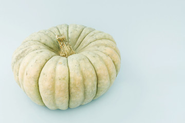 Big pumpkin isolated