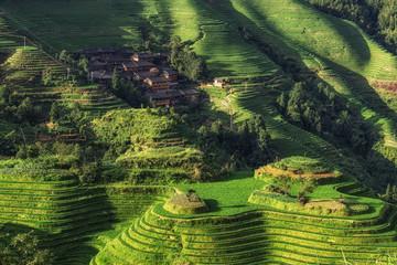 Foto auf Acrylglas Guilin Longi rice terrace