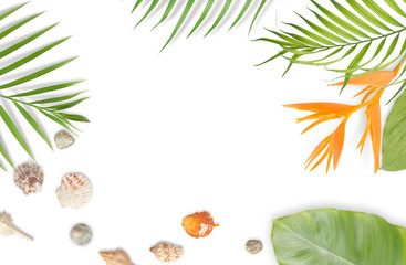 Seashells with tropical leaves frame on white background. Summer beach concept