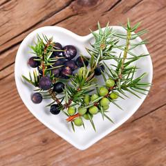 Wacholder, Homöopathie und Kochen mit Heilkräutern