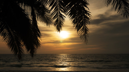 palm tree leaves frame with sunset and tropical sea.