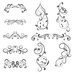 vector illustration set of border calligraphic and dividers decorative