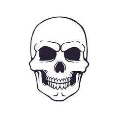 Vector illustration. Hand drawn doodle of human skull with a terrible smile. Symbol of danger and death. Cartoon sketch. Poison sign. Isolated on white background