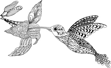 Hummingbird and flower. Hand drawn patterns for coloring. Freehand sketch drawing for adult antistress coloring book in zentangle style.