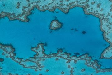heart reef im great barrier reef