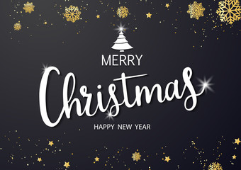 Merry Christmas vector text and New Year Xmas background. with beautiful various snowflakes,
