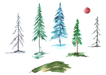 A set of watercolor conifers. Pine, spruce, fir, larch, dried tree, green, winter tree. Forestry set. Handmade drawings on white isolated background.