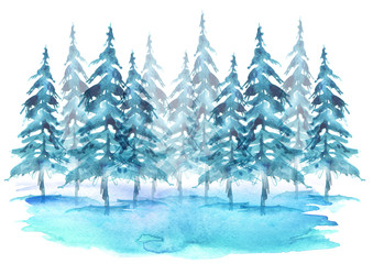Watercolor group of trees - fir, pine, cedar, fir-tree. Blue, winter forest, landscape, forest landscape. Drawing on white isolated background.