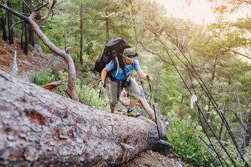 adventure and hiking concept - man with backpack travel in woods