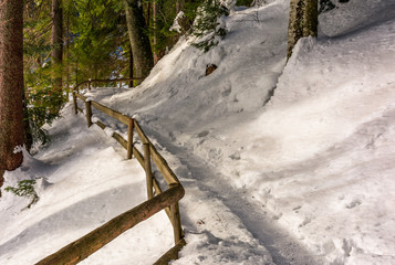 path with wooden fence in winter forest. lovely nature scenery