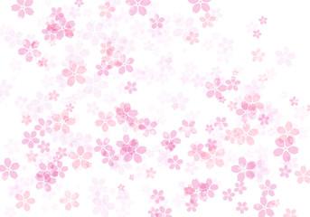 桜 ピンク 01