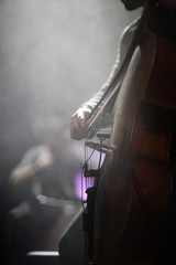 The cellist of the ensemble performs a part for his instrument in a concert on stage.