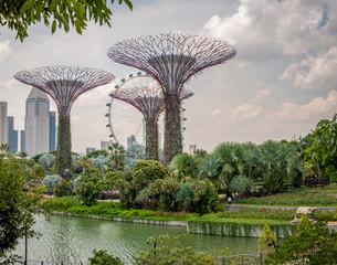Jardins de Singapour