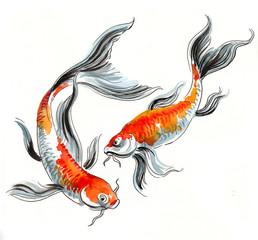 Watercolor koi fishes