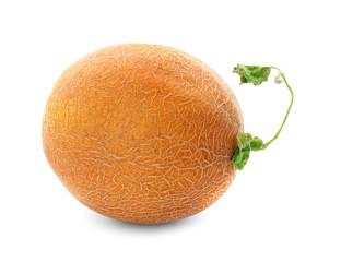 Fresh ripe melon, isolated on white