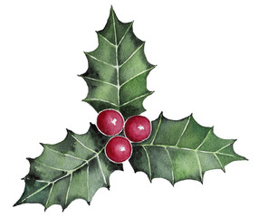 Holly berry leaves detail Christmas decoration. Traditional holiday symbol. Watercolor illustration isolated on white background.