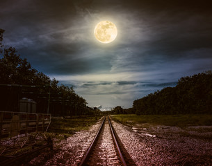 Wall Mural - Night sky and full moon above silhouettes of trees and railway.