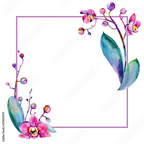 Wildflower orchid flower frame in a watercolor style. Full name of ...
