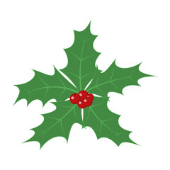 Christmas holly berry leaves. Vector illustration.