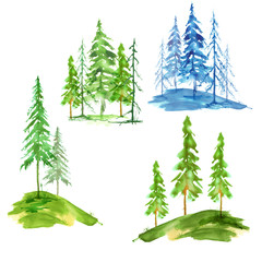A set of watercolor conifers. Winter spruce, pine. Summer green tree - cedar, larch, spruce, pine. Watercolor art collection on white isolated background.
