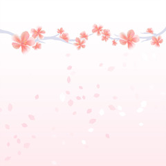 Flower background. Branches of Sakura and petals flying isolated on light pink gradient background. Apple-tree flowers. Cherry blossom. Vector