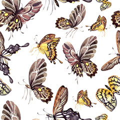 Watercolor pattern with beautiful butterflies. Illustration