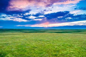 grassland in Xinjiang,China