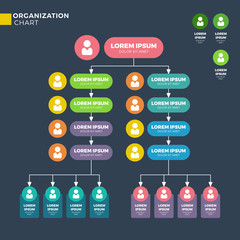 Business organizational structure. Vector hierarchy chart