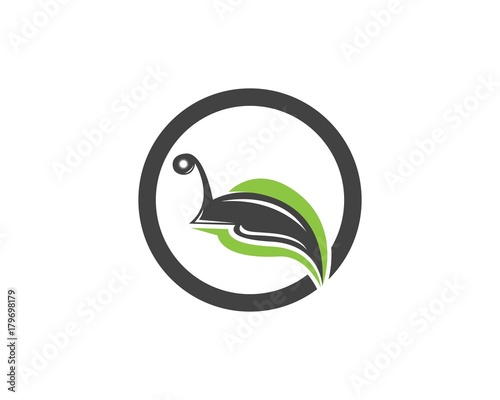 snail in leaf logo design template stock image and royalty free